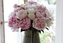 Love...Flowers / by Erin Bennett