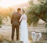 WEDDINGS BY RETROSPECT IMAGES / wedding photography northern california