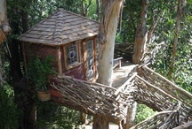 Tree Houses / by Marie Brooks