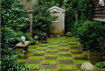 My secret garden / Whimisical overgrown garden dreams.