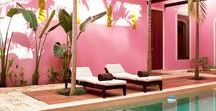 Pink Tropical Outdoor Oasis / This is a client-curated board for turning a drab backyard space to a tropical oasis.