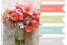 Color Palettes / Coordinating Colors  / by Sue Jensen Brown