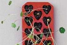 GYO herbs & vegetable