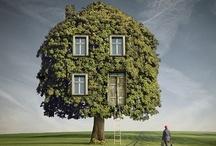 Houses & Homes / Housєs & Hoℳєs