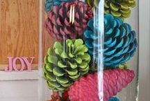 ✄ CRAFTS: Perfectly, Pretty Pinecones! / by Carla Meisberger Vaught