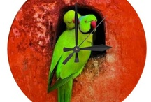RED & GREEN  / ✔ Rєd & Gяєєη / by MyFantabulousWorld