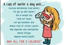 Health / Fitness / by Jeri Lynn