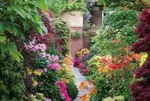 Gardens for the Soul / by Gloria Godfrey