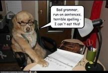 Academic Skills: Grammar / by Catherine Rifkin