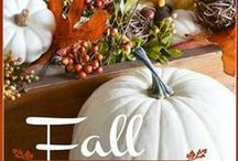 My favorite season...Fall / by Lindsay Boman