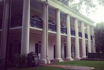 All About Oak Alley Plantation! / Oak Alley Plantation is the Grande Dame of Louisiana River Road plantations!  Our 1/4 mile alley of 300-year-old oaks, and our 170+ year old 'Big House' are the inspiration for movies, weddings, and dream vacations!  New exhibit, 'Slavery at Oak Alley' is very moving, very educational.  Topics: Historical Site, Civil War, Antebellum, Louisiana Plantation, Sugarcane, Slavery. / by Oak Alley Plantation