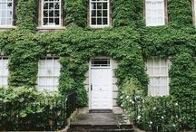 curb appeal / by blemons 🔱