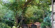 home   gardens / Various gardens that I love!