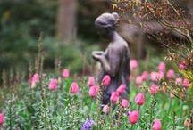 Gardening / by Eleonora Kozlovska