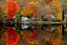 Fall ~ Autumn
