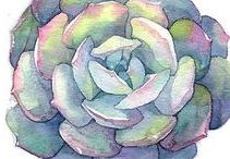 Succulents & Cactus | Design, Patterns & Graphics / A round-up of cactus, echeveria and other succulent graphics for the southwestern / navajo / andes / central america or garden inspired design project
