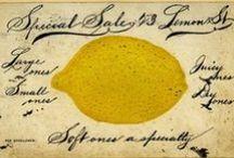 Lemons / by Erin Carney
