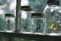 neat ideas / by Olivia Shumate