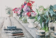 spring + flowers / by Olivia Shumate