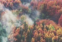 Autumnal / Celebrating Autumn and Fall