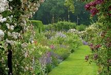 Gardens / by Ann Wellnitz