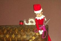 Elf Adventures / by Renee Fegan