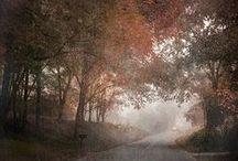 Autumn-Into-Winter / by Maitreya Levanchild