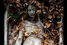 Elegant Elegies / The Nature of Cemeteries  / by Carel DiGrappa