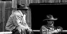 Cowboys Who Work