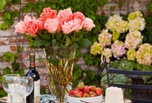 Floral & Gardens / by Lucinda Gal