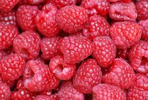 Red Berry Season / All sorts of deliciousness using raspberries, strawberries, cherries and all other red berries.