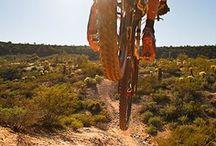 Trail / by I/O Merino