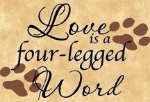 Four legged loves