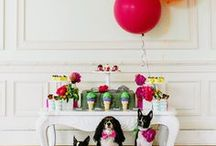 Party Hardy /  Decorate to Celebrate