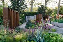A lovely little garden