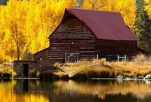 Barns & Cabins / by Romesty