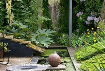 Garden Ideas / by Tracy