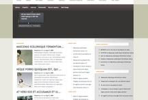 Some Basic Professional Web Themes