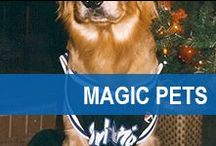 Magic Pets / Our fans come in all shapes, sizes, and breeds!