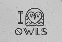 cool owls / by Katie Harris