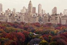 Empire State Of Mind / Concrete Jungle » Favorite Place / by Mika