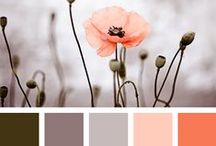 Color Palettes / Color Palettes to help with all of your decorating projects.