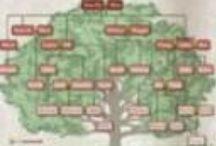 Genealogy / by Shawna Landers