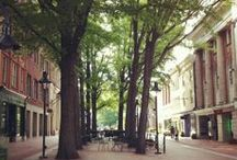 Veritable Virginia / Favorite places, events, and discoveries in beautiful Virginia. / by Jenni H