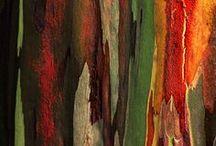 Art Inspiration - Texture