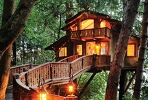 tree houses / by Laurie Bosse