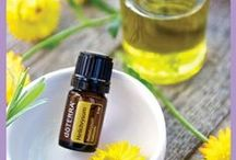 Verbena- dōTERRA Essential Oils / For more information or to purchase Essential Oils visit mydoterra.com/verbena / by Mindy Clark