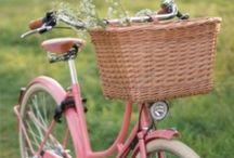 Bicycle Fun