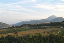 Le Marche landscapes / Pictures of Le Marche. All taken by me.