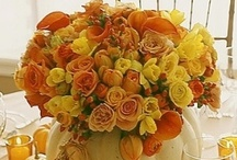 All Autumn / Halloween to Thanksgiving Food & Decor Ideas!